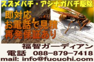 daijoubu111111111